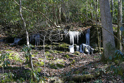 Love the icicles on the rocks along the trails