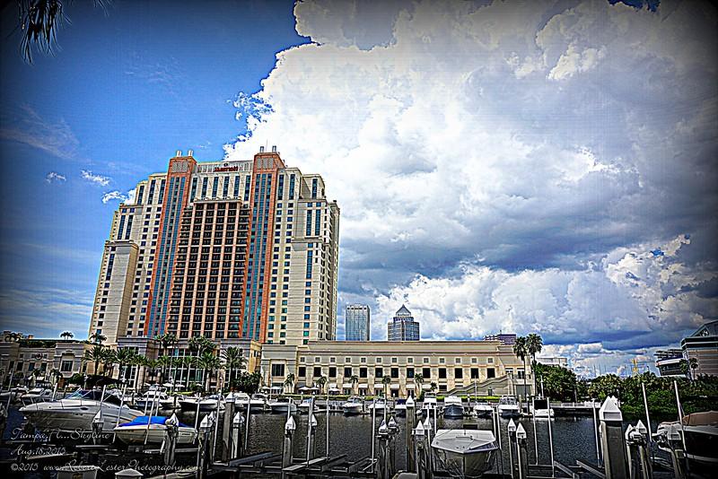2015-08-18_DSC01969_Tampa Skyline,TampaFl  2
