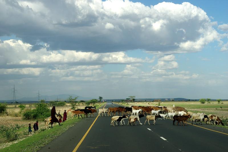 Massai crosswalk