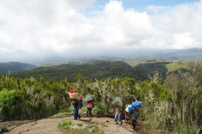 Porters in the Kilimanjaro region