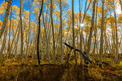 Telluride Oct 2017-17