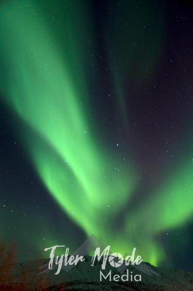 3.7.2011, Coldfoot, Alaska