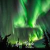 Aurora Borealis Lodge, 3.8.16