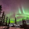 Aurora Borealis Lodge, 3.3.16