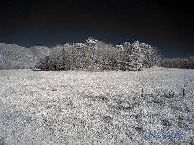 Cades Cove IR,  Cades Cove Smokey mountains  National Park, TN