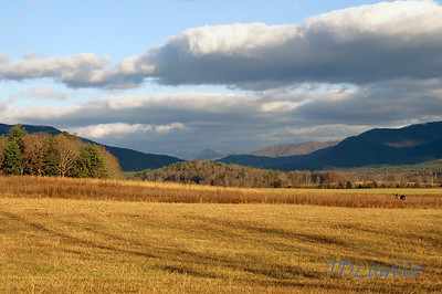 Cades Cove Smokey mountains  National Park, TN