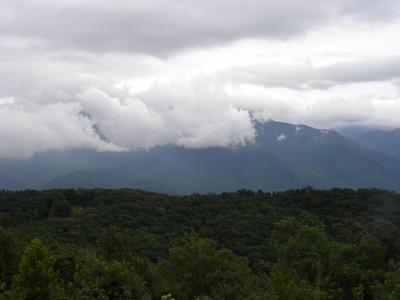 TN-2011-0716-0981