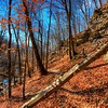 Fall in the Virgin Falls State Natural Area, Tennessee