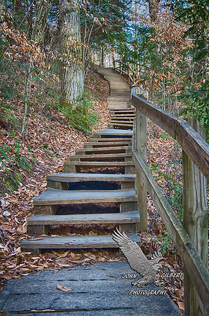 Burgess Falls Trail.  Although a steep climb you can see how the park service built steps to assist visitors along this trail.