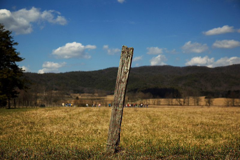 14 March 2009.  Cades Cove, TN.