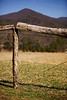 12 March 2009.  Cades Cove, TN.
