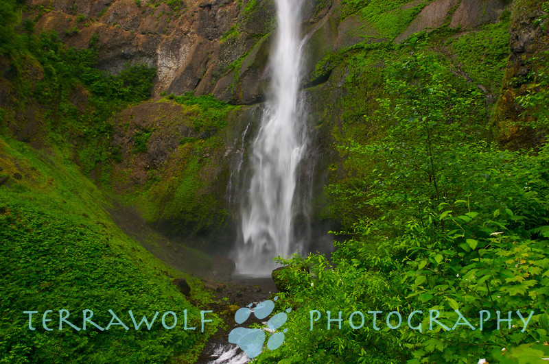 The upper Multnomah falls