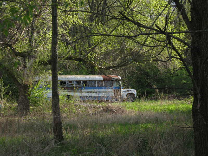 Backyard - This bus was the view I had from my Senior year apartment. There was a junk dealer next door and he had an old church bus melting into the yard.