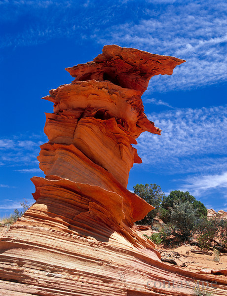 Weird Rock, South Coyote Buttes, Arizona