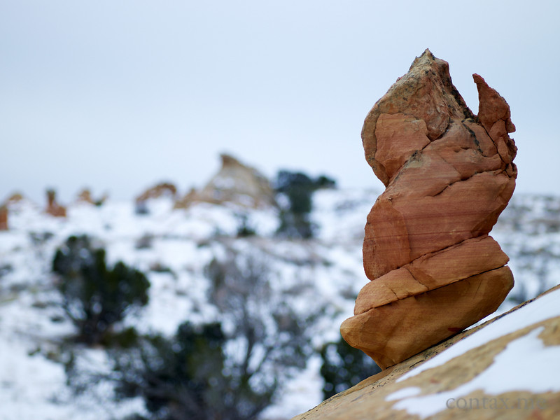 The Sentinel. South Coyote Buttes, Arizona