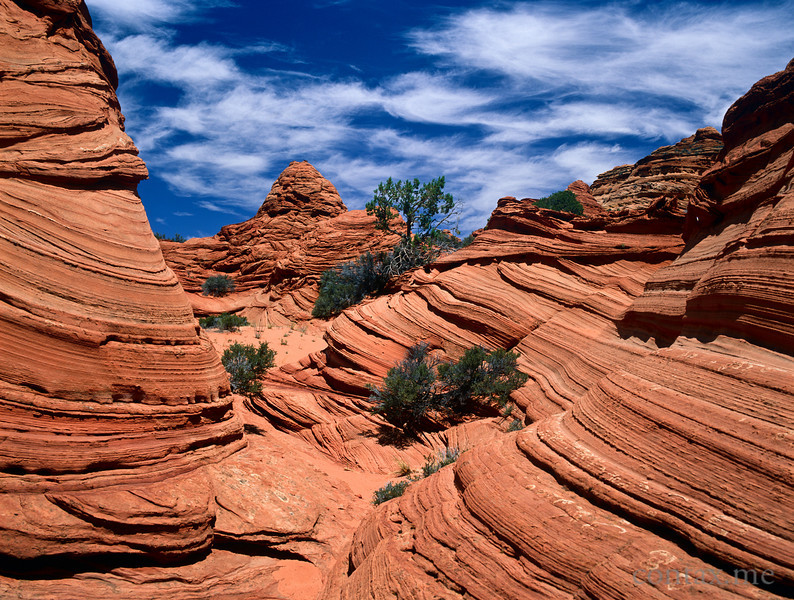 The Paw Hole, South Coyote Buttes, Arizona