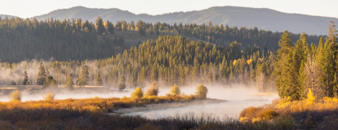 Morning mist on the Snake River, Teton National Park