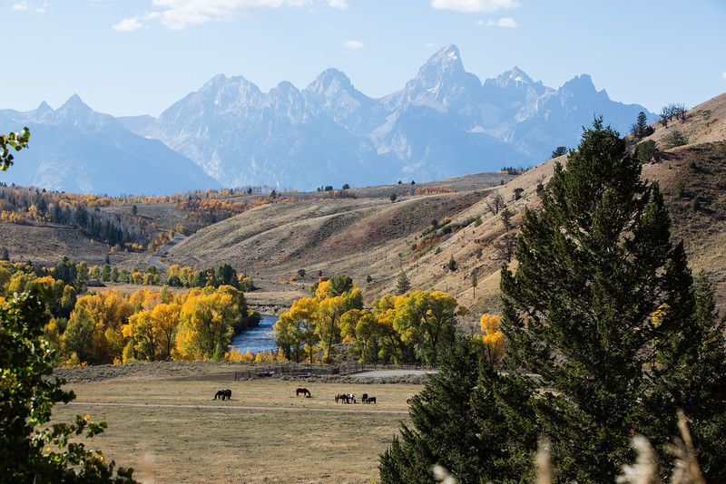 Tetons in the Fall