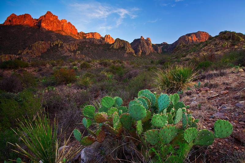 Texas, Big Bend National Park, Texas, Chisos Mountains, Sunset, Landscape, 德克萨斯, 大弯曲国家公园,风景