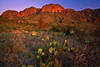 Texas, Big Bend National Park, Texas, Chisos Mountains, Sunrise, Landscape, 德克萨斯, 大弯曲国家公园,风景