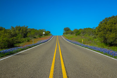 Texas bluebonnet Highway near Enchanted Rock.