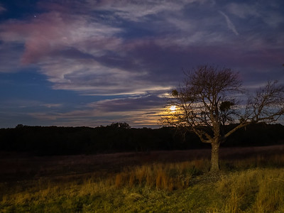 Moonset Over The Ranch
