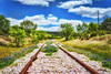Hill Country Tracks