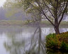 Flintrock Pond Mist