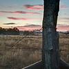 Dawn - Old Baylor Park. Independence, TX