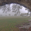 """Foggy View"" - HDR - Old Baylor Park, Independence, TX"