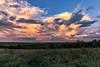 texas landscape smugmug-4