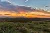 texas landscape smugmug-2