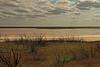 A landscape taken Oct. 2, 2010 near Muleshoe,  TX.