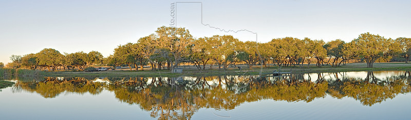 Panorama - Oak Trees and Pond at Sunset,<br /> Nordheim, Texas