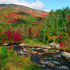 Ausable River in back of the Hungry Trout Restaurant.