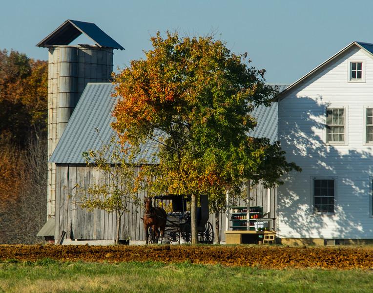 Ethridge, Tennessee- Amish community, SW of Nashville