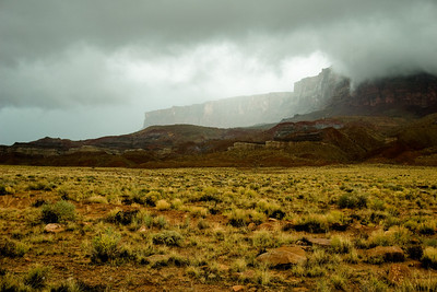 _DSC2199:  This photograph was taken during the 2006 storm of the century.  The Vermilion Cliffs in the background are shrouded in clouds and rain, while the foreground vegetation nearly glows with saturated color.