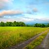 Farmers Meadows