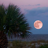 Full Moon..Atlantic Beach, Fl.