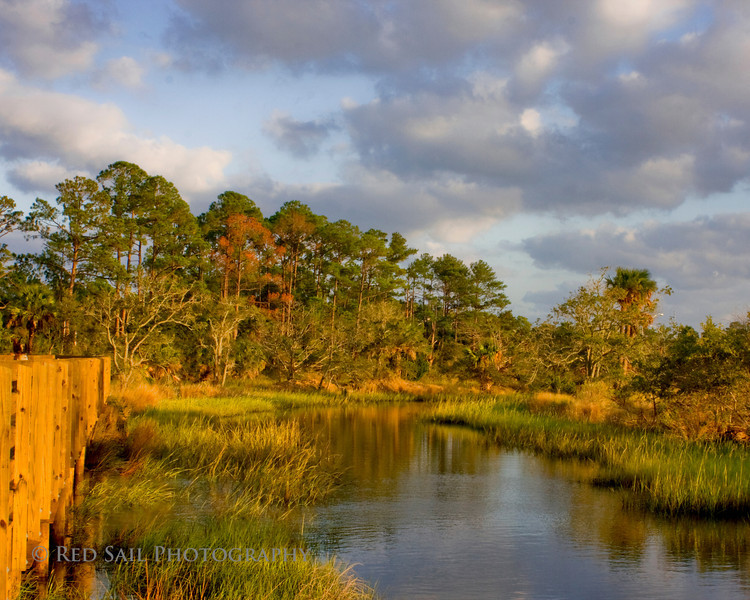 """""""Tide View""""  This is the Tide View Preserve in Atlantic Beach, Florida. The board walk extends into the marsh with beautiful scenes in all directions."""