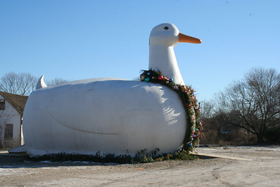 The Big Duck at Christmas.
