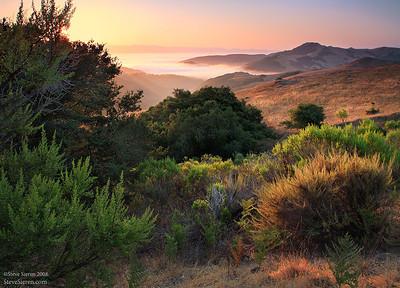 Foggy covered shores of Morro Bay - Central Coast California