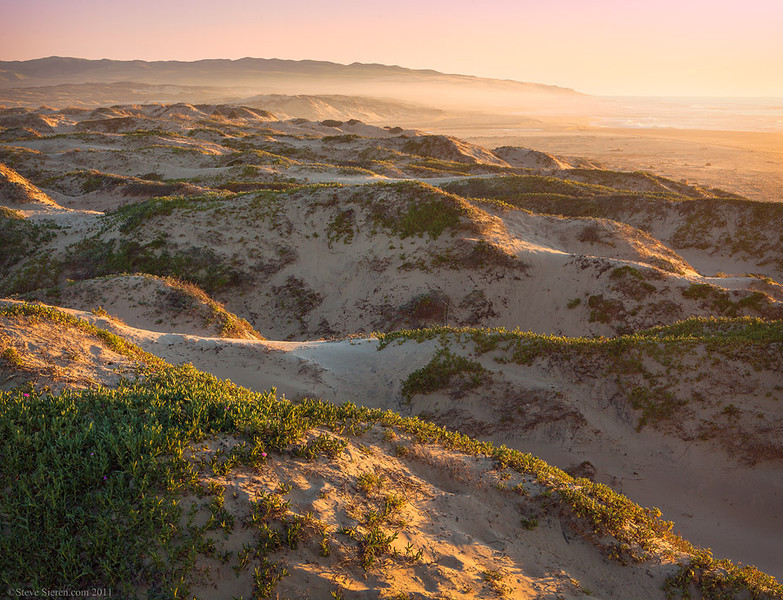 Dunes Preserve - Central California Coast<br /> <br /> This nature preserve features towering dunes 550 ft tall, which are the tallest on the west coast.  Springtime offers beautiful wildflowers such as evening primrose and sand verbuena.  This place is home to the snowy plover during it's nesting season so part of it's access is closed through part of the year.
