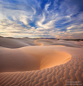 California Coastal Dunes #2