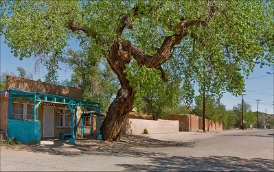 Old Cottonwood - First Street - Cerrillos, New Mexico