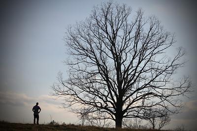PJ Tree 5A