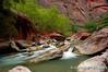 Virgin River, Zion National Park, Utah