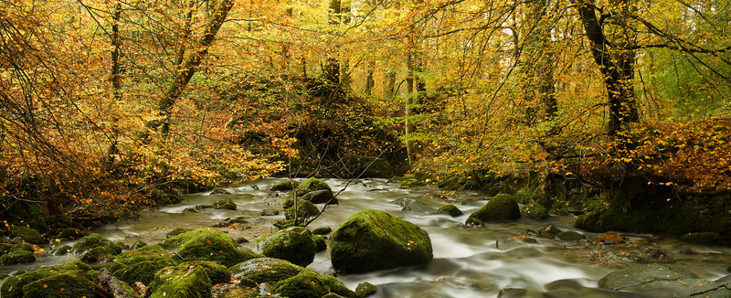STOCK GHYLL  #2         pano 1