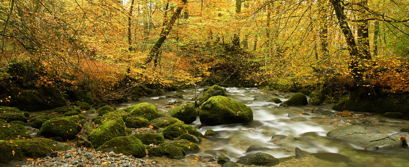 STOCK GHYLL  #1  pano 2