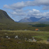 June 2012. View from beside the main road to Ullapool looking towards the peaks of An Teallach.